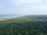Looking Down - Cape Hatteras