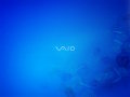 Vaio - Azure Float