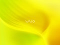 Vaio - Tender Yellow 2007