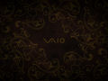 Vaio - Brown Lizard