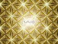 Vaio - CR Series - Champagne Gold